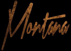 Montana Engels Artist logo Speedpainting belgium